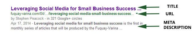 Title, URL, and Meta Description in  search results