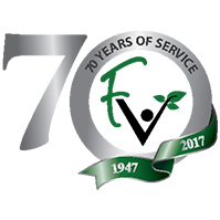 70th anniversary logo icon